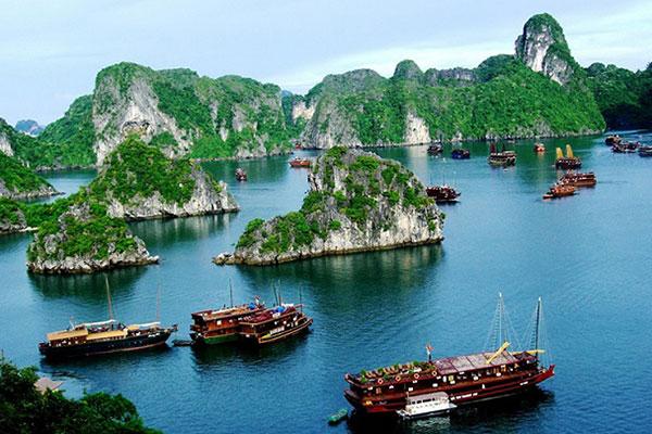 Tour Du Lịch Hạ Long 1 Ngày – THE SINH TOURIST