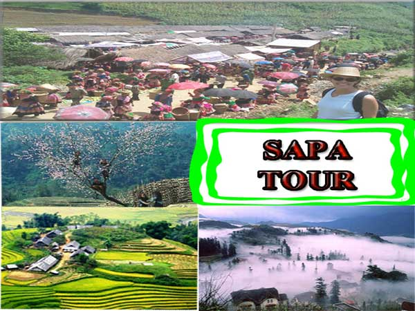 Tour Du Lịch SaPa Thác Bạc 3 Ngày 4 đêm Trọn Gói Giá Rẻ